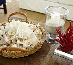 White Wave Coral | Pottery Barn