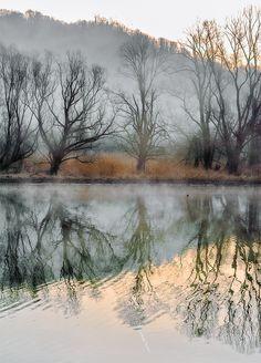 The River Adda - null