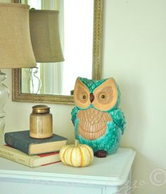 Owl Decor for the dining room!