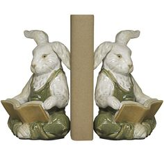 Rabbits with Books Bookends @ wildlifewonders.com