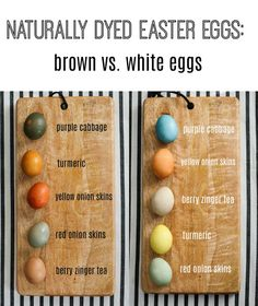 Pretty Real: How to Make Earthy Toned Naturally Dyed Easter Eggs