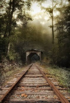 ~~The holler.... | a foggy day along the train tracks in Western North Carolina | by Todd Wall~~