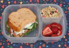Tons Of Lunch Box Ideas
