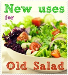 3+ ways to upcycle old salad. Just because your leftover lettuce, tomatoes and cucumber are getting old and limp, you don't have to chuck them out...