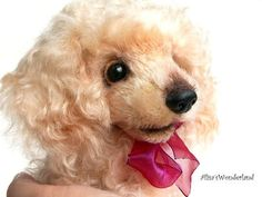 Puppy poodle Marie Antoinette  The Queen by Alisa´s Wonderland