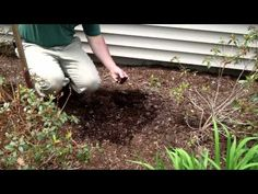 ▶ Why and How to Turn Mulch in Garden Landscape Beds - YouTube