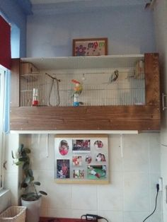 BUDGIE CAGE
