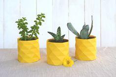 diy succulentes ananas / DIY facile pour transformer de petites succulentes et une boite de conserve en petits ananas égayant la maison !