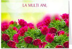 Felicitare de La multi ani Felicitare de La multi ani personalizabila cu flori roz.