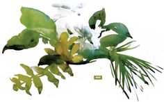 Watercolor Lesson: Setting Up and Painting a Floral Still Life