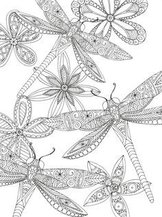 Dragon Flies by Lizzie Preston #adult #colouring