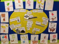 Chalk Talk: A Kindergarten Blog: Basic Needs