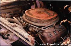 Chrysler Hemi, Dodge Muscle Cars, Hemi Engine, Car Barn, Performance Engines, Mopar Or No Car, American Muscle Cars, Barn Finds, Buckets