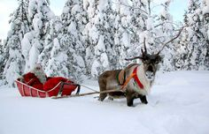 Rovaniemi, Finland (AKA, The Official Home of Santa Claus)
