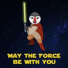 #StarWars Preston says : May the force be with you! #StarWarsForceAwakens #StarWarsVII