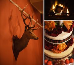 The stag, the fire and some tartan ribbon on the cake. A fine winter wedding! Edinburgh Photography, Scottish Weddings, Blue Sky Photography, Tartan, Ribbon, Fire, Photoshoot, Interiors, Studio