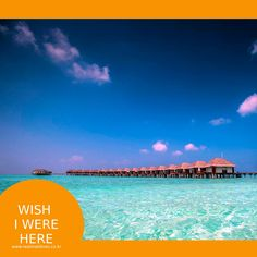 오늘도 바쁜 하루를 보내고 난 뒤, 몰디브의 평화로운 사진을 보며 오늘도 몰디브에서의 휴가를 꿈꿔봅니다. #몰디브  #wishiwerehere #리얼몰디브 #여행