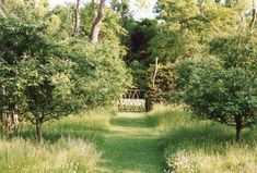 Garden designer Miranda Brooks undercuts the rigid lines of a perfectly straight path with a rustic garden gate made of woven branches. For more of her work, see Dream Landscapes: 10 Perennial Gardens Inspired by Piet Oudolf.
