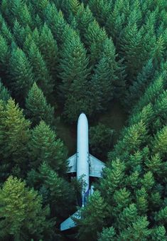 The post Tree Photography Wallpaper Airplane Trees Top View Wallpaper appeared first on ThePhotocrafters. Wallpaper Stores, View Wallpaper, Wallpaper Pictures, Cool Wallpaper, Tree Photography Wallpaper, Amazing Hd Wallpapers, Trees Top View, Wallpapers For Mobile Phones, Iphone Wallpapers