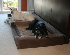 Big Dog Beds ~ http://modtopiastudio.com/the-unique-raised-dog-bed-for-the-beloved-pet/