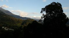 Book Valley View Cottage in Munnar Online, Bachelor Cottage in Munnar