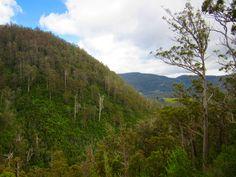 Pelverata Falls Valley, Pelverata, Tasmania