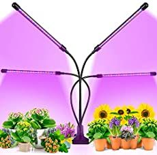 EZORKAS Grow Light, Tri Head Timing 80 LED 9 Dimmable Levels Plant Grow Lights for Indoor Plants with Red Blue Spectrum, Adjustable Gooseneck, 3 9 Timer, 3 Switch Modes - fruit seeds how to grow Indoor Plant Lights, Grow Lights For Plants, Plant Lighting, Led Grow Lights, Indoor Plants, Indoor Gardening, Epsom Salt Tomato Plants, Grow Light Bulbs, Grow Lamps