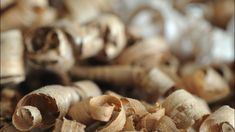 Garlic, Stuffed Mushrooms, Vegetables, Wood Dust, Wood Scraps, Ovens, Woodwind Instrument, Home Technology, Stuff Mushrooms