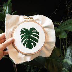 Almost finished... Monstera deliciosa  . . . . #casnac #kasnak #nakış #işleme #elyapımı #handembroidery #handembroidered #handmadeisbetter #HandmadeLoves #handembroider #handstitched #handcrafted #contemporaryembroidery #contemporaryart #hoopart #embroideryhoops #embroider #embroidery #embroidered #embroideredart #embroideryart #etsy #homedecor #homeinteriors #monsteradeliciosa #monstera