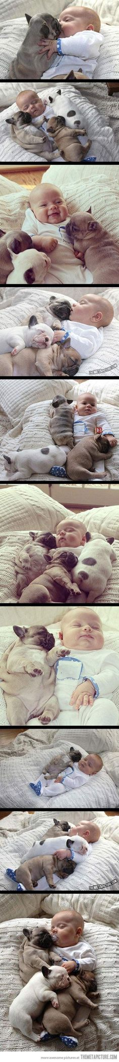 The cuteness is almost too much to handle!