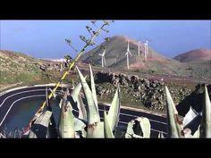 Décollez pour les Canaries à la découverte de l'île d'El Hierro, classée