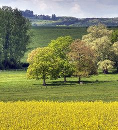Countryside✧ Paysage de Lorraine by laurent jung Beautiful World, Beautiful Places, Beautiful Pictures, Belle France, Field Of Dreams, Felder, Country Life, Country Charm, Country Living