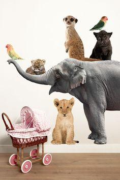 Muurstickers Safari Friends Set Olifant, XL
