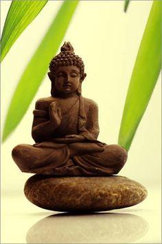 """Poster 50 x 80 cm - """"Buddha in Balance"""" von Tanja Riedel - auch in anderen Größen und als Leinwandbild erhältlich von POSTERLOUNGE, http://www.amazon.de/dp/B00B6PIC94/ref=cm_sw_r_pi_dp_2kIgrb17CYXKP"""