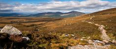 View towards Glenmore, Scotland Cairngorms National Park, I Want To Travel, Dream Vacations, Irish, The Outsiders, National Parks, Places To Visit, Scenery, England