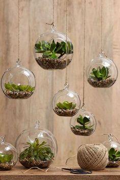 とても素敵なハンギンググラスにお好みの植物を植えるとまるで小さな植物園のよう。 麻ひもで吊るしただけなのに、遊び心溢れる演出に思わずうっとりしてしまいます。