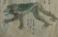 享和元年(1801年)水戸藩東浜で捕まったとされる河童 water demon Kappa