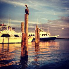 Marina at Ponce Inlet