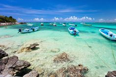Akumal Mexico is a luxurious resort destination, located on the stunning coastline of the Mayan Riviera. Explore our tips, advice and regional information.