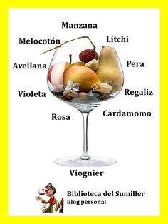 Una infografía documental sobre los descriptores aromáticos que se encuentran en la mayoría de los vinos blancos del mundo, según sean aromas primarios, secundarios o terciarios, teniendo en cuent…