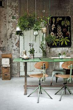Une déco nature et originale avec les plantes suspendues | My Little Things
