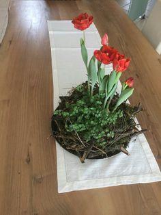 Terrarium, Plants, Home Decor, Terrariums, Flora, Interior Design, Home Interior Design, Plant, Home Decoration