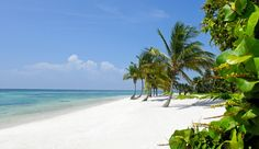 Tortuga Bay, Punta Cana, Dominican Republic >> Can you tell I want to go away?! :) #JetsetterCurator