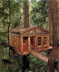 """Awesome Nature Travel on Instagram: """"Treehouse, Washington 