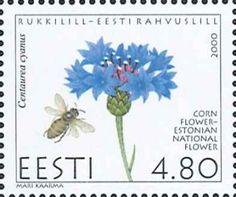◇ Estonia  2000