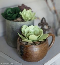 Four Paper Succulent Tutorials and Patterns from Lia Griffith!