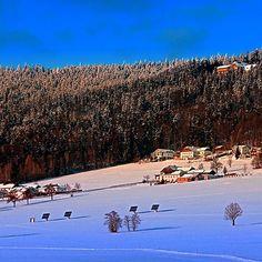 Bohemian forest winter wonderland. Aigen-Schlägl, Austria / Österreich