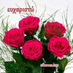 Greek Language, Rose, Flowers, Plants, Pink, Greek, Plant, Roses, Royal Icing Flowers