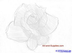 how to draw a rose in pencil step 3