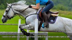 A cheval tu vis le meilleur comme le pire. Un jour tu t'envoles et touches le ciel, le lendemain tu tombes et goûtes au sable.